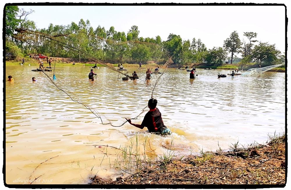 photoblog image Pond Net fishing